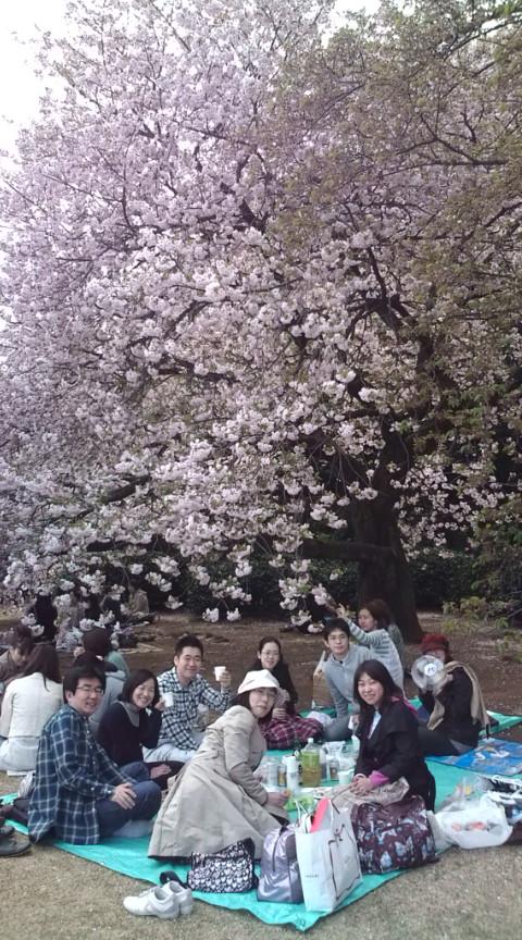 お花見!! 今日は朝日のような合唱団の人達とお花見です。 朝から場所取りをしてくれ...  テノ